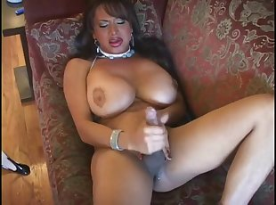 Tranny, transsexual, lady boy and shemale